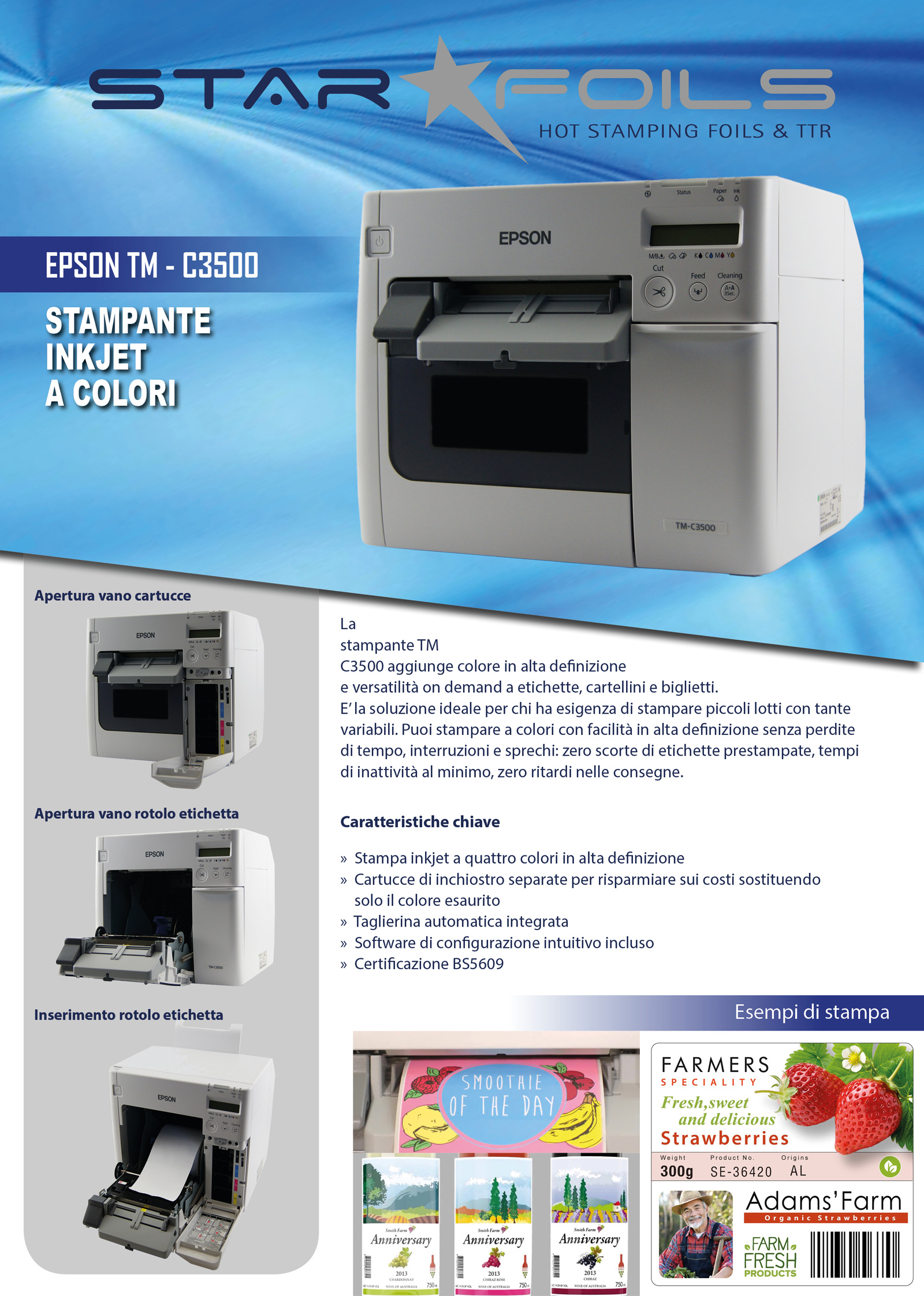 EPSON TM C3500_pag1